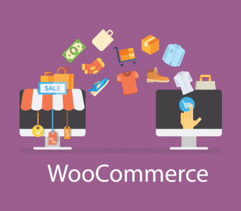 Woocommerce Concepts from sctrach